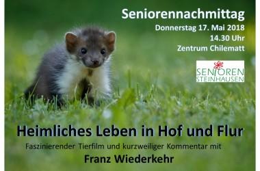 20180517 SN Heimliches Leben in Hof und Flur