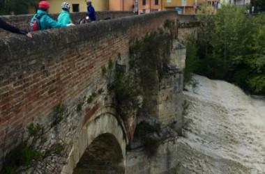 Veloferien Fratta Terme - 11