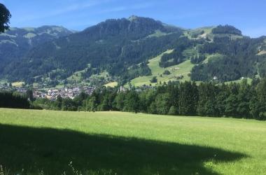 Oberndorf - 16